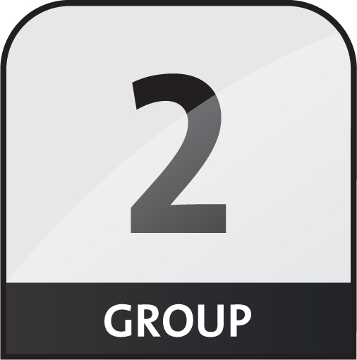 group 2 icon