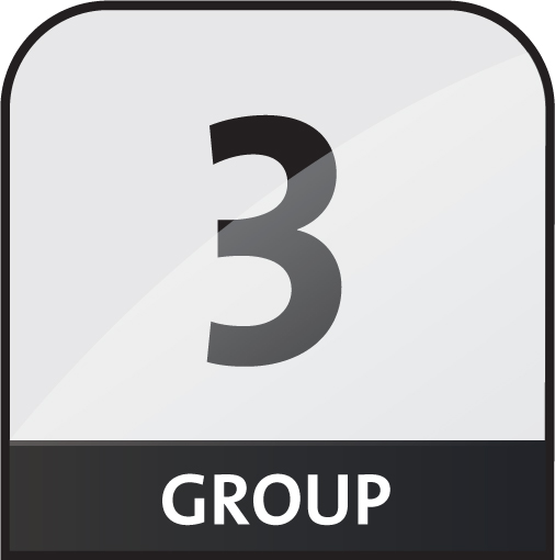 group 3 icon