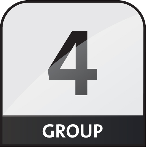 group 4 icon