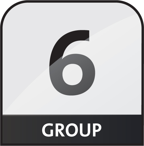 group 6 icon